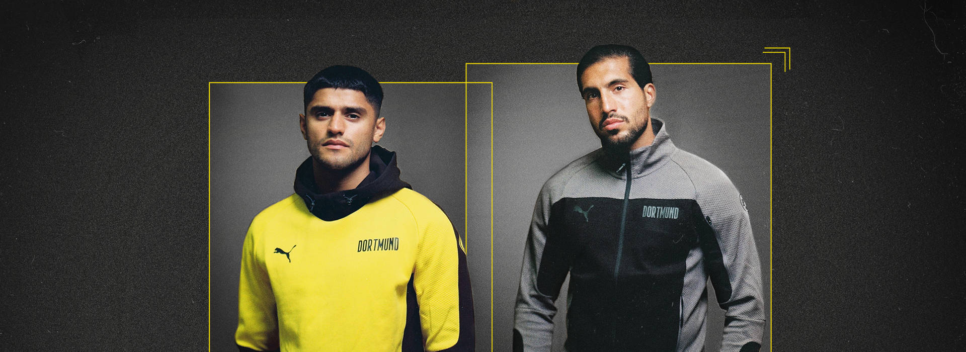 Our new evostripe collection Top Line-Up
